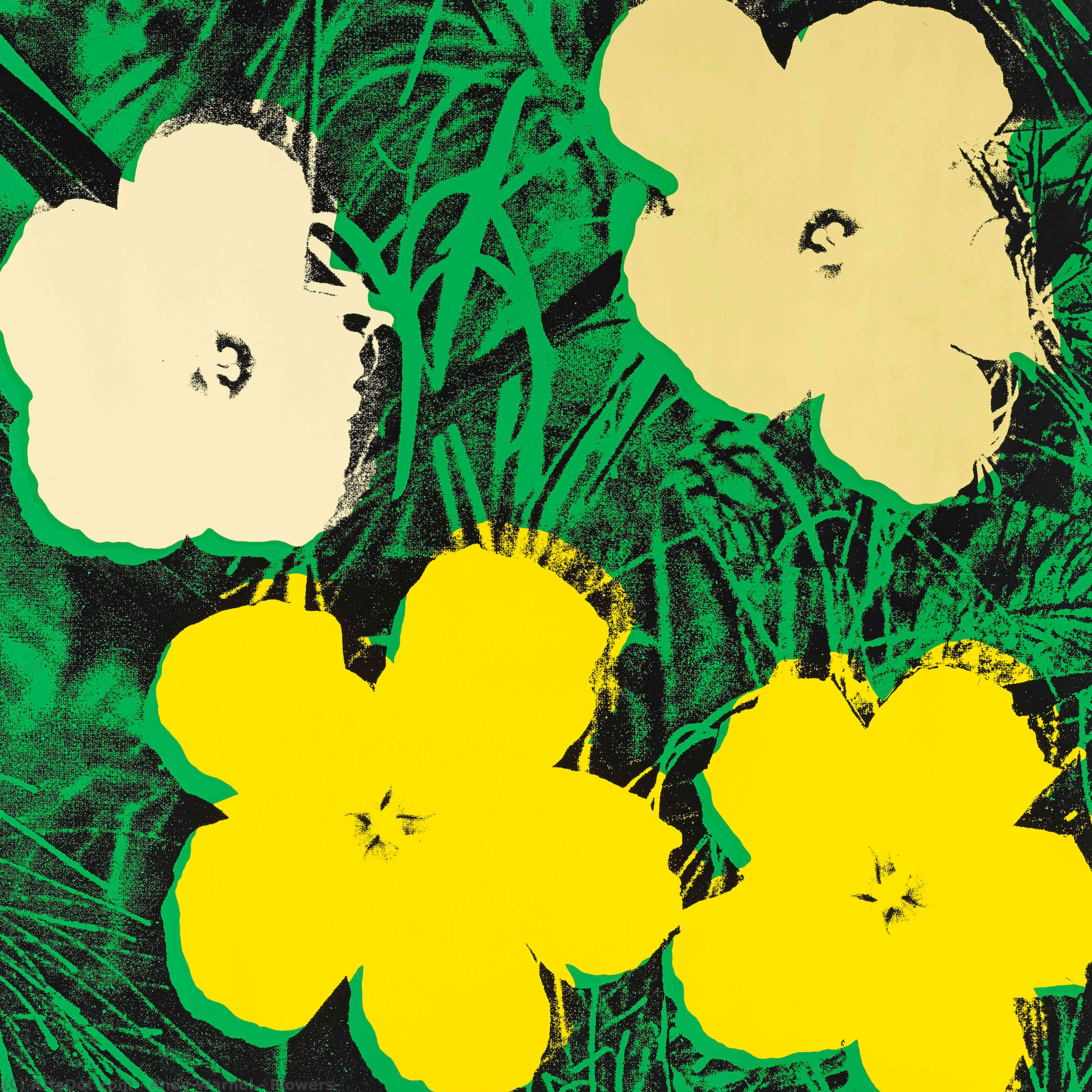 Wikioo.org - The Encyclopedia of Fine Arts - Painting, Artwork by Andy Warhol - Flowers