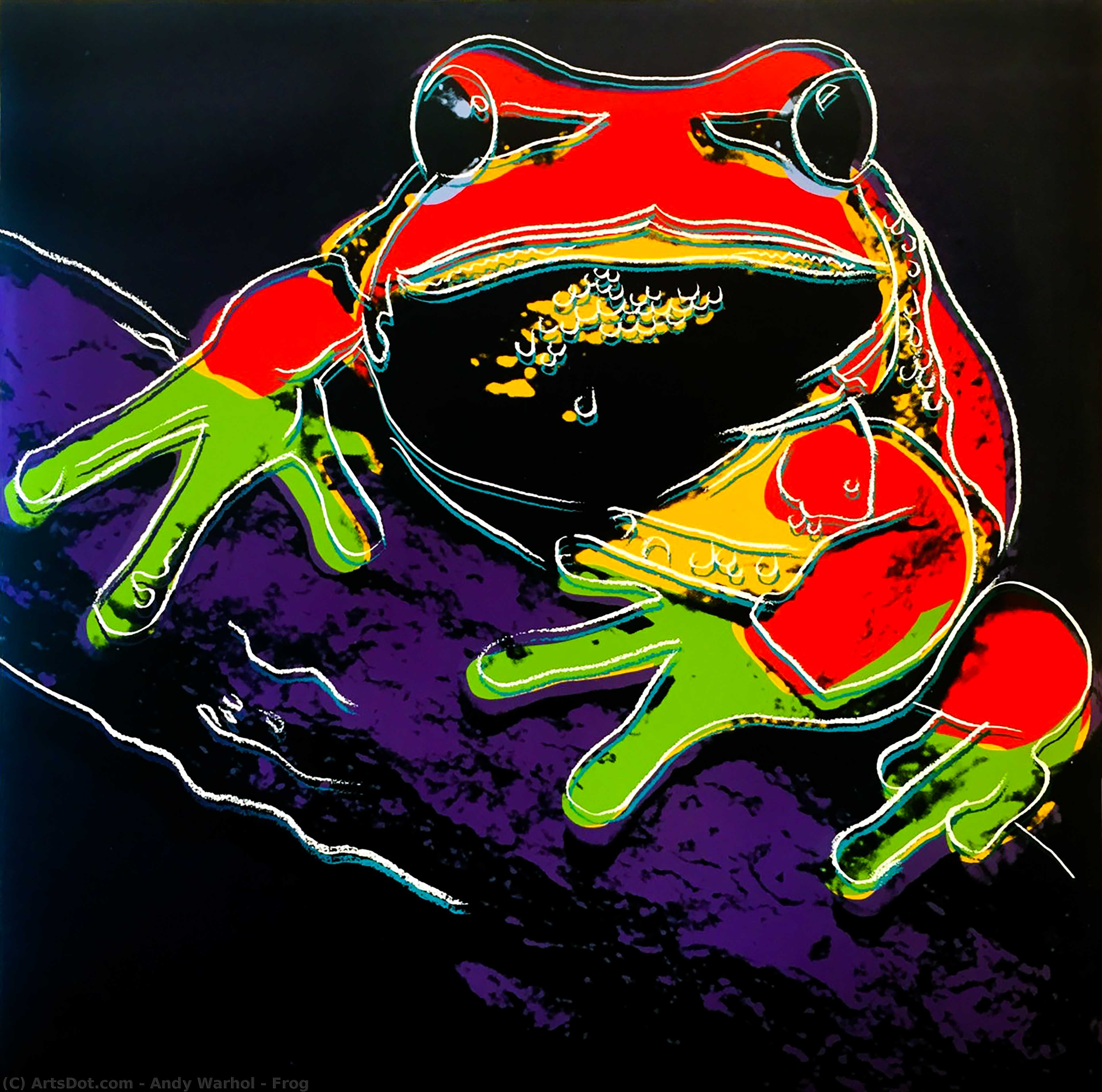 Wikioo.org - The Encyclopedia of Fine Arts - Painting, Artwork by Andy Warhol - Frog