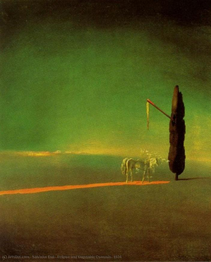 Wikioo.org - The Encyclopedia of Fine Arts - Painting, Artwork by Salvador Dali - Eclipse and Vegetable Osmosis, 1934