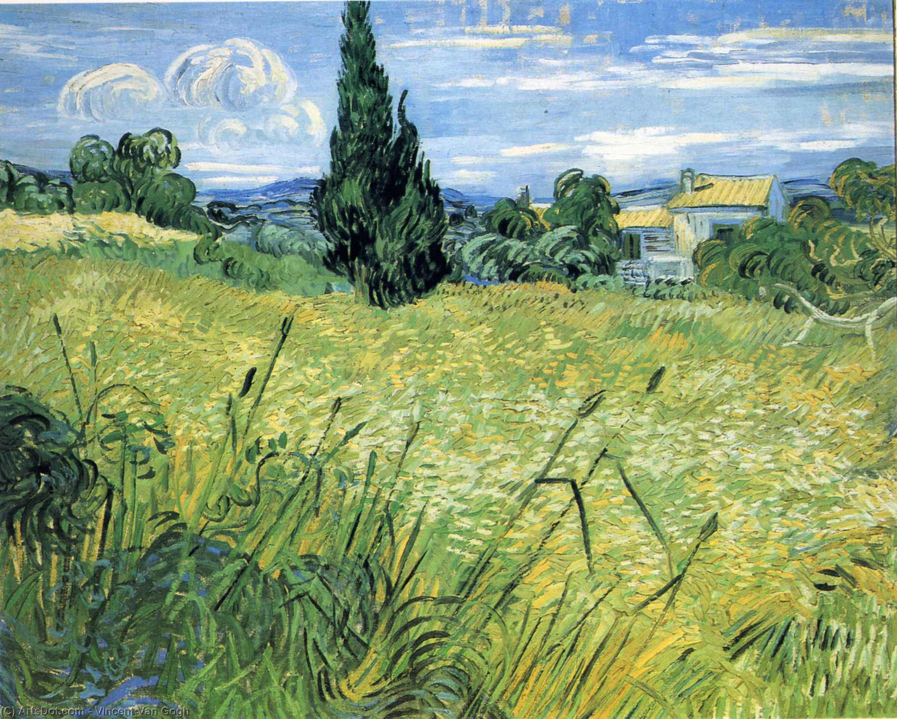 Wikioo.org - The Encyclopedia of Fine Arts - Painting, Artwork by Vincent Van Gogh - Green Wheat Field with Cypress