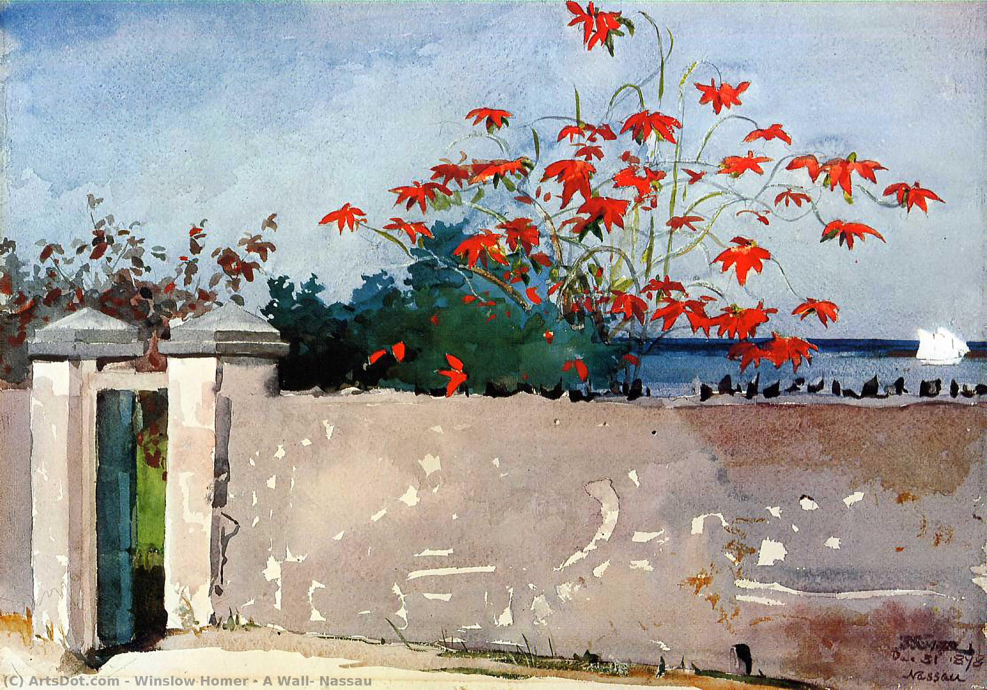 A Wall, Nassau - Winslow Homer