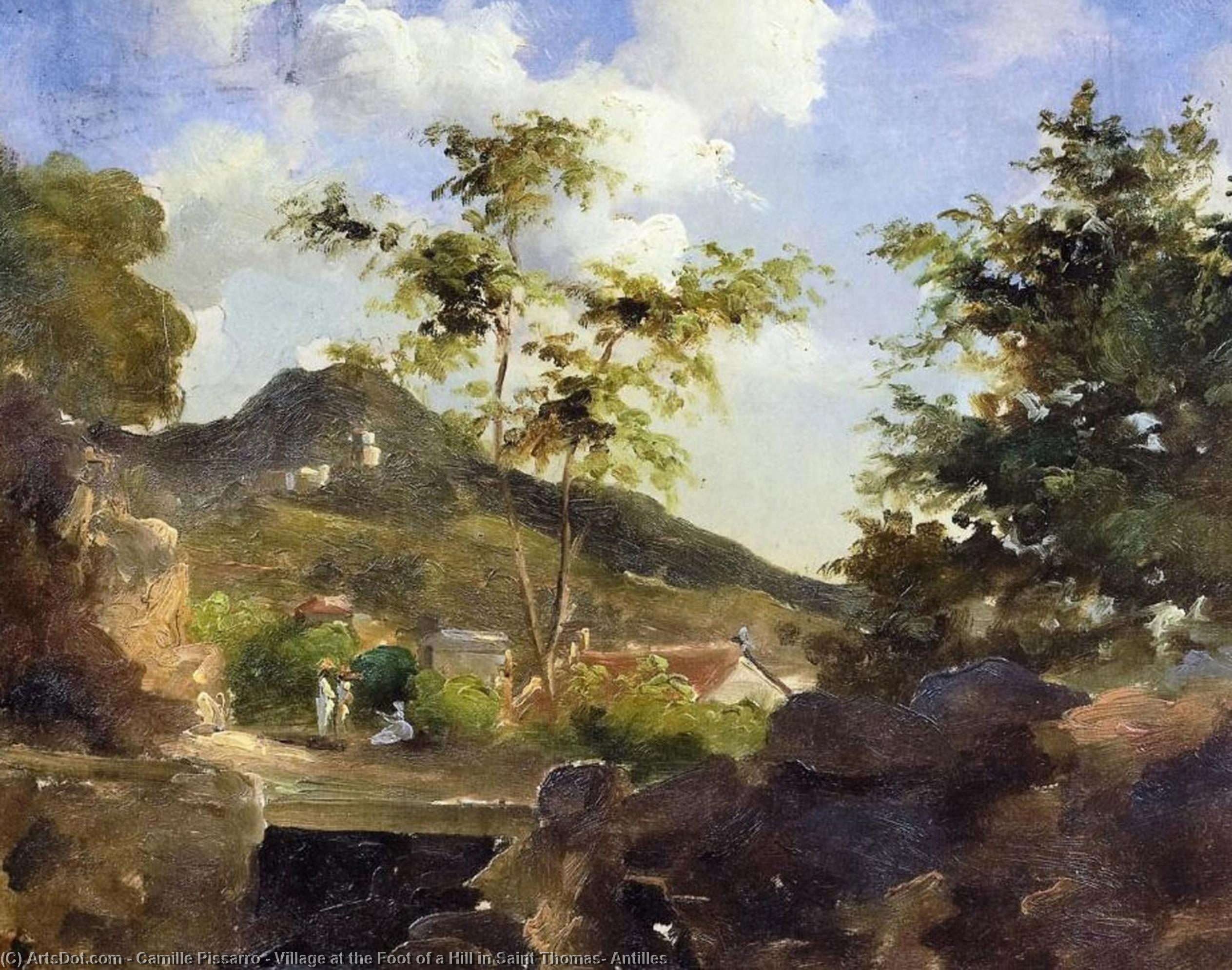 Wikioo.org - The Encyclopedia of Fine Arts - Painting, Artwork by Camille Pissarro - Village at the Foot of a Hill in Saint Thomas, Antilles