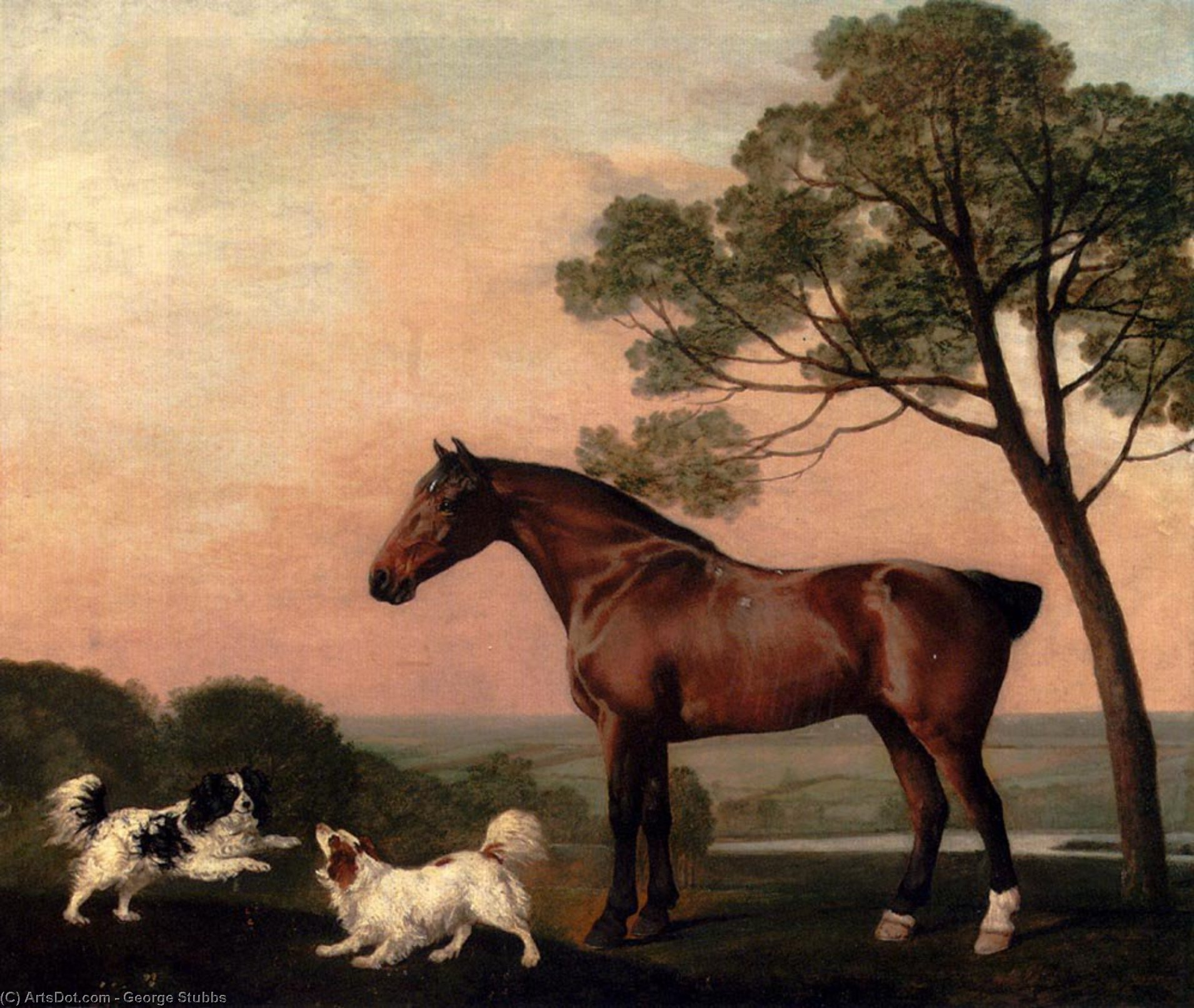 Wikioo.org - The Encyclopedia of Fine Arts - Painting, Artwork by George Stubbs - A Bay Hunter With Two Spaniels