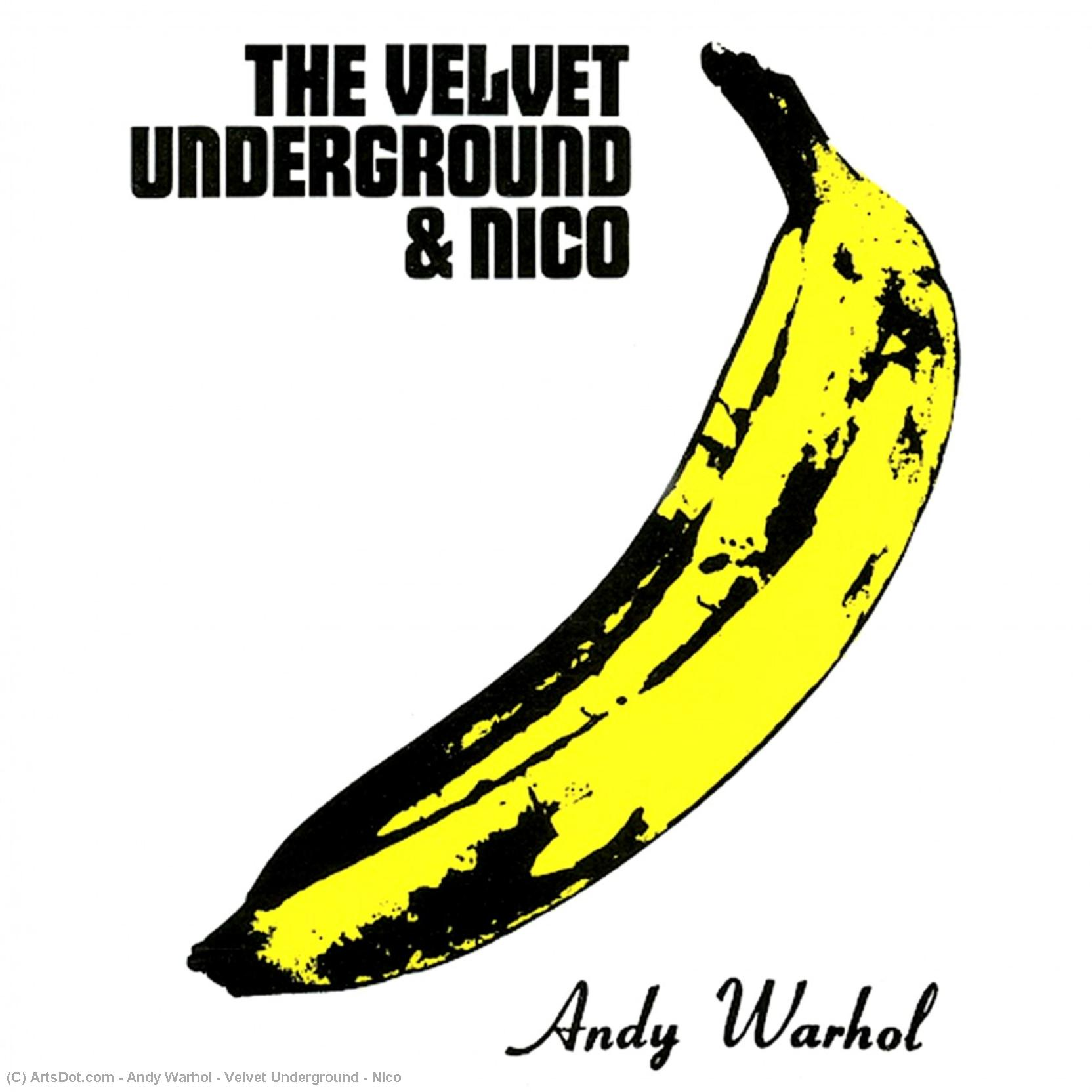 Wikioo.org - The Encyclopedia of Fine Arts - Painting, Artwork by Andy Warhol - Velvet Underground ^ Nico