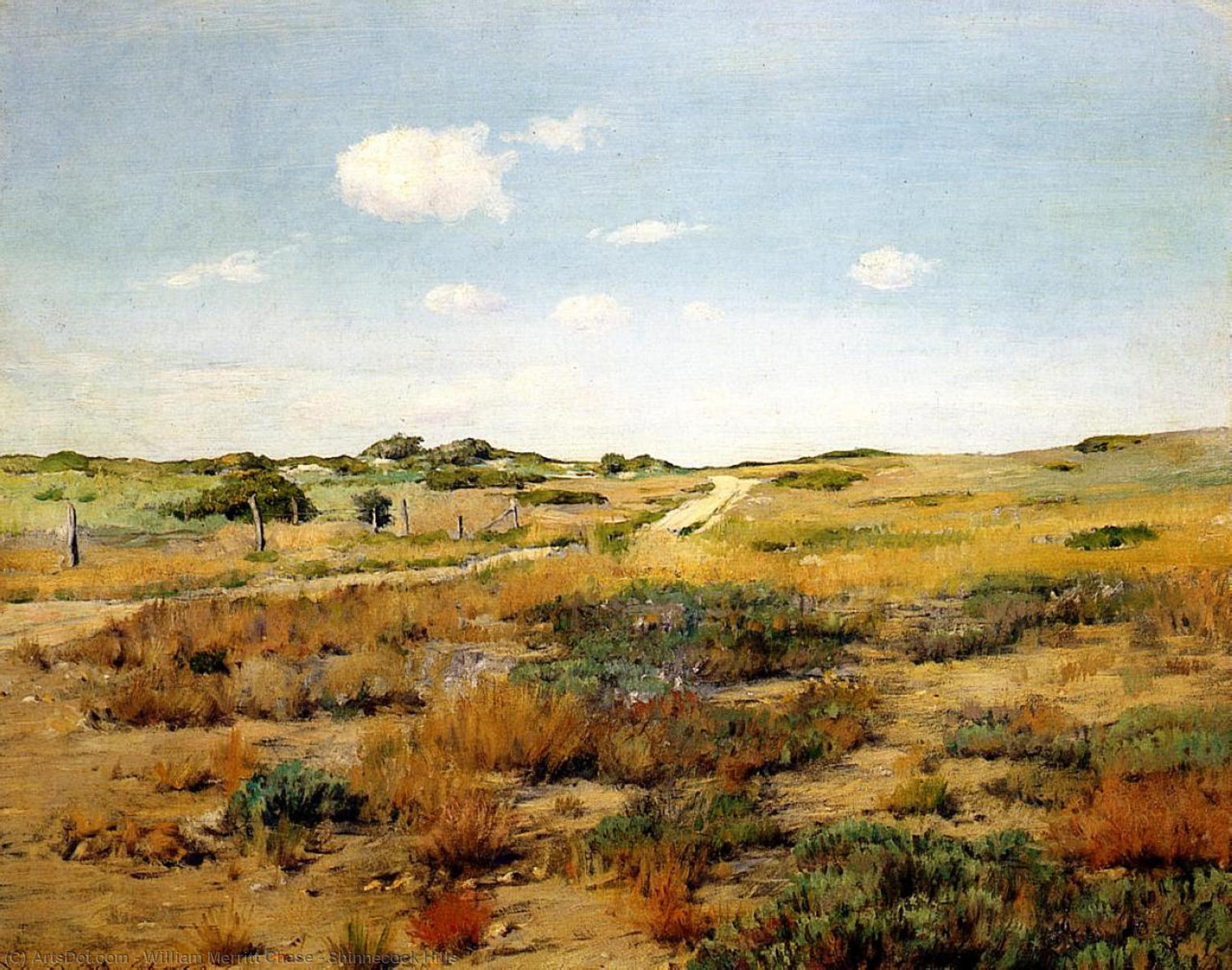 Wikioo.org - The Encyclopedia of Fine Arts - Painting, Artwork by William Merritt Chase - Shinnecock Hills