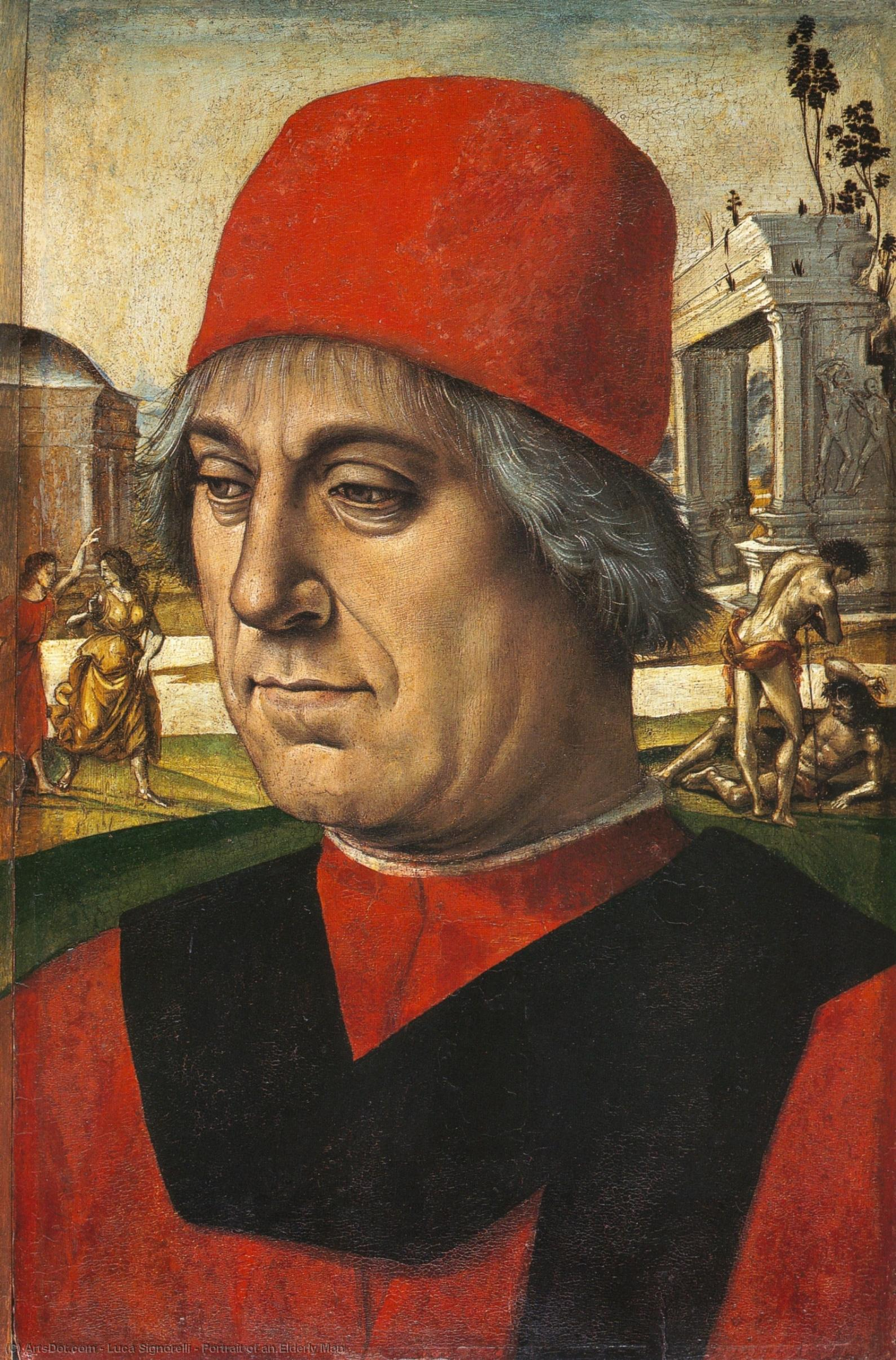 Wikioo.org - The Encyclopedia of Fine Arts - Painting, Artwork by Luca Signorelli - Portrait of an Elderly Man