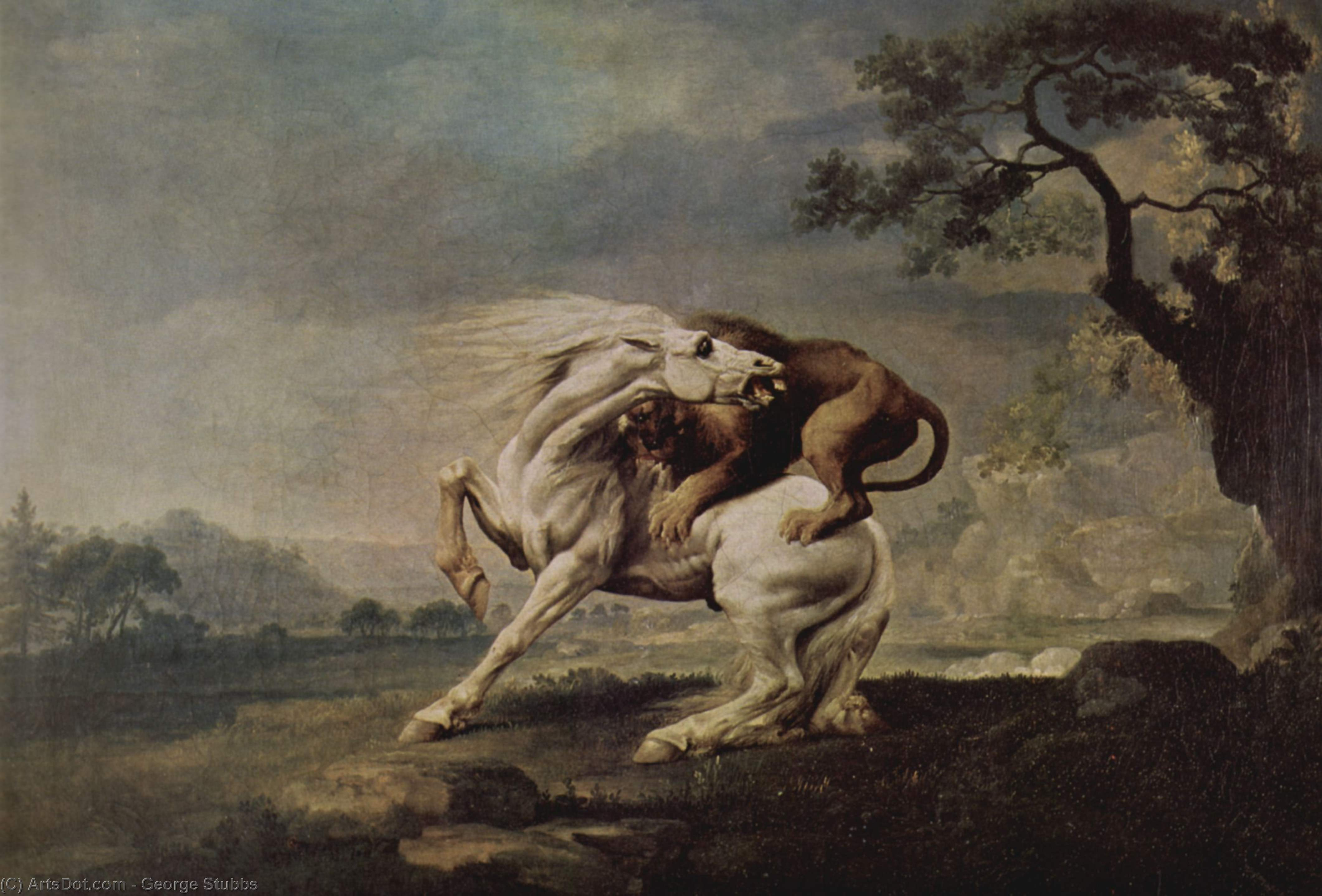 Wikioo.org - The Encyclopedia of Fine Arts - Painting, Artwork by George Stubbs - Lion Attacking a Horse