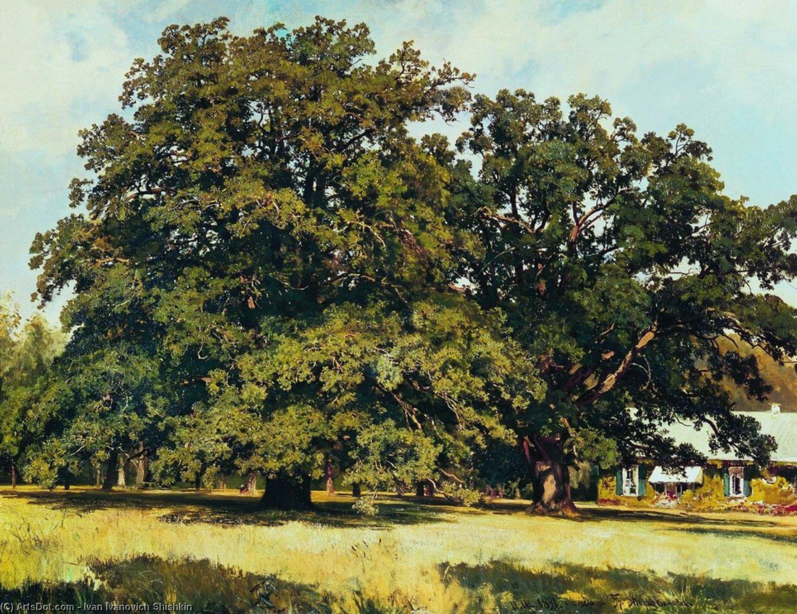 WikiOO.org - Encyclopedia of Fine Arts - Schilderen, Artwork Ivan Ivanovich Shishkin - The Mordvinovo Oaks