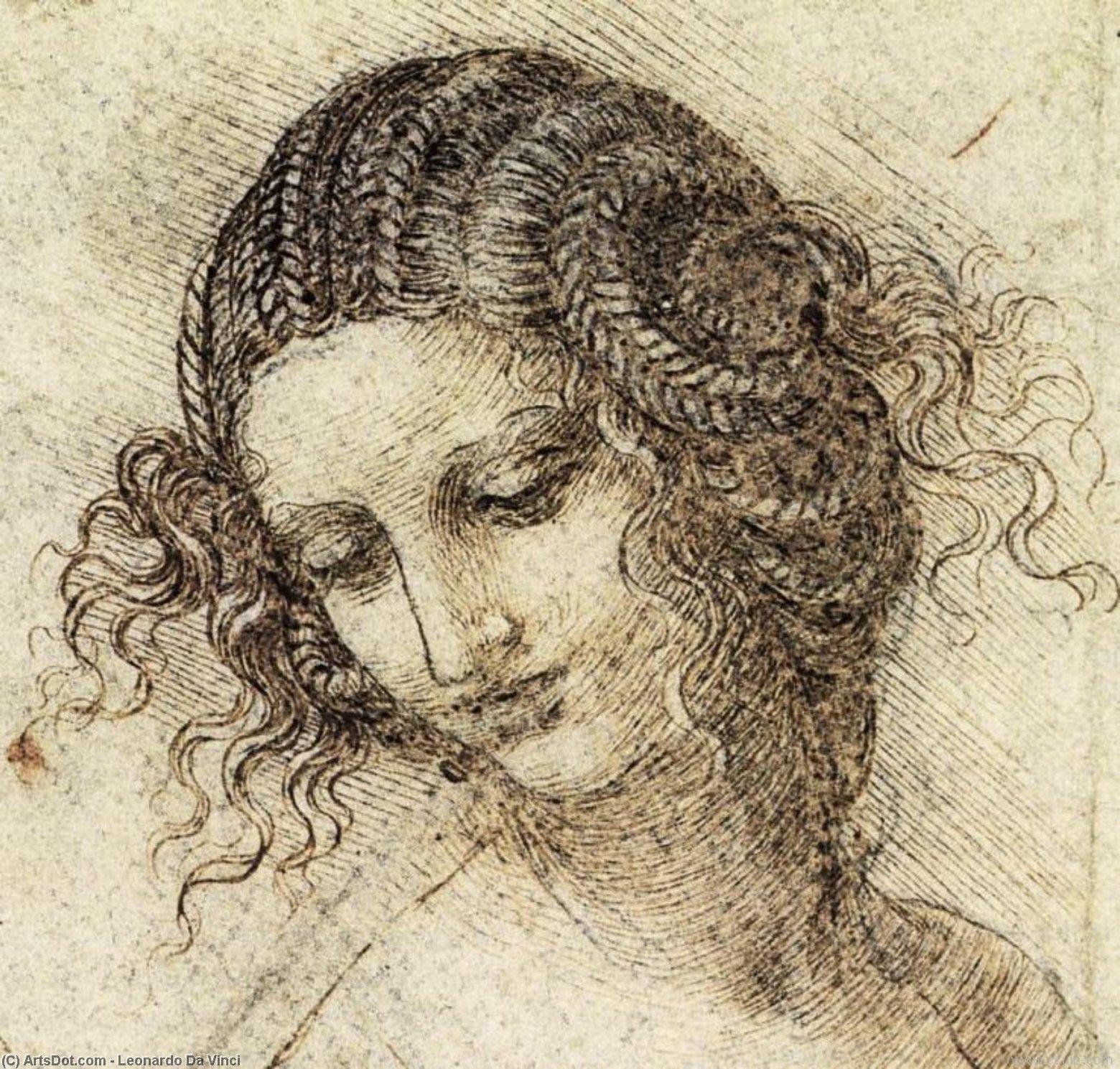 Wikioo.org - The Encyclopedia of Fine Arts - Painting, Artwork by Leonardo Da Vinci - Study for the Head of Leda