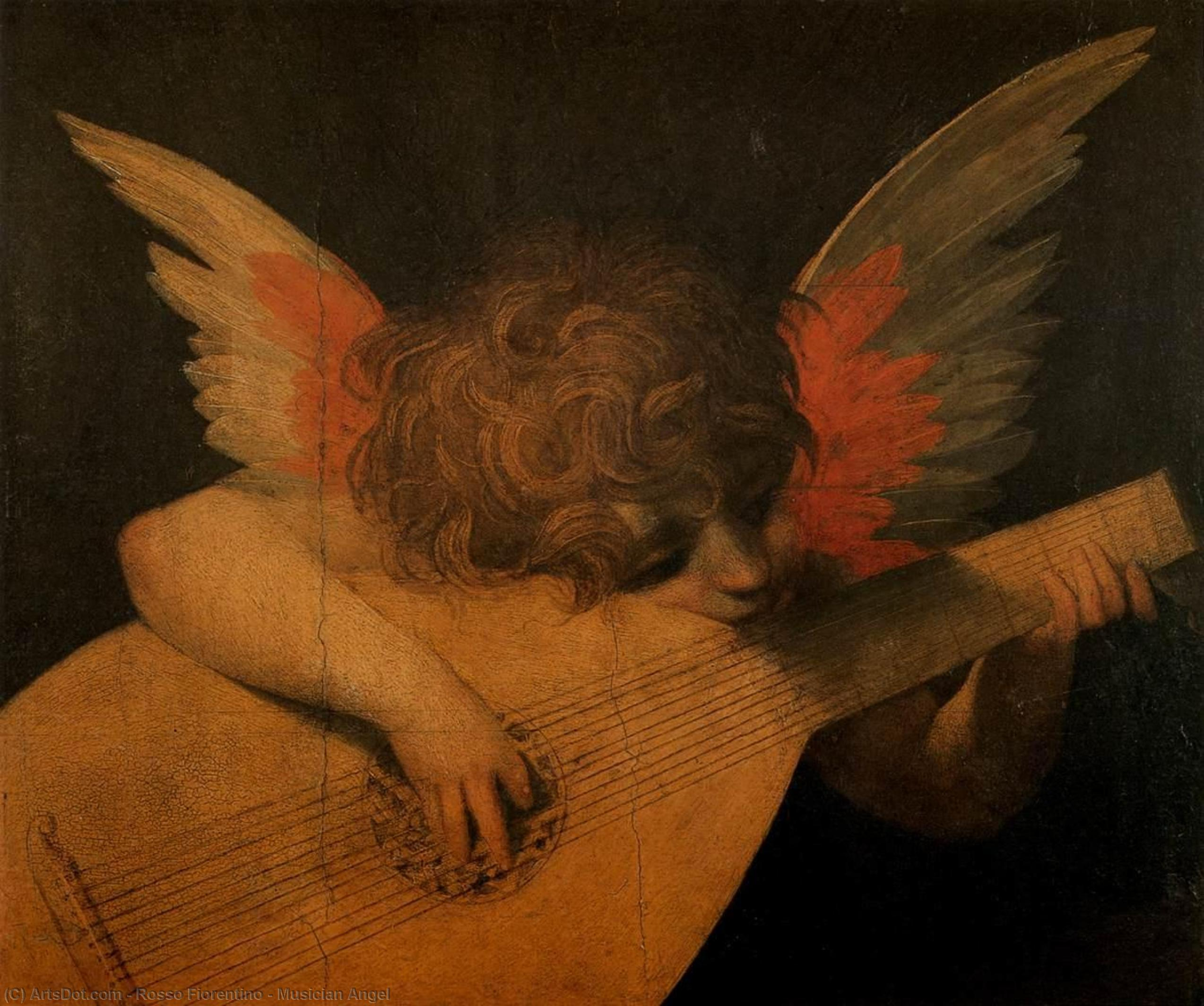 Wikioo.org - The Encyclopedia of Fine Arts - Painting, Artwork by Rosso Fiorentino - Musician Angel