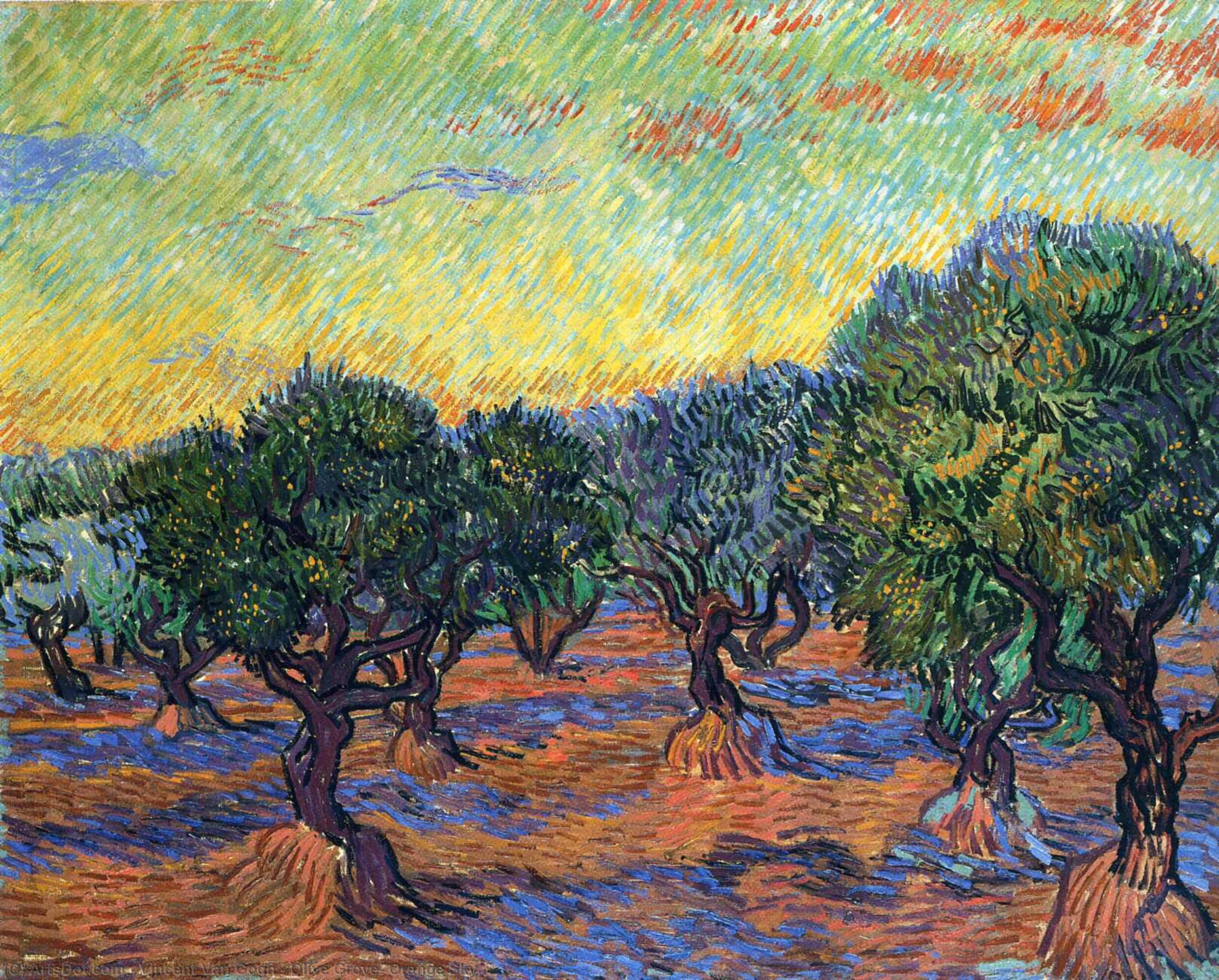 Wikioo.org - The Encyclopedia of Fine Arts - Painting, Artwork by Vincent Van Gogh - Olive Grove: Orange Sky