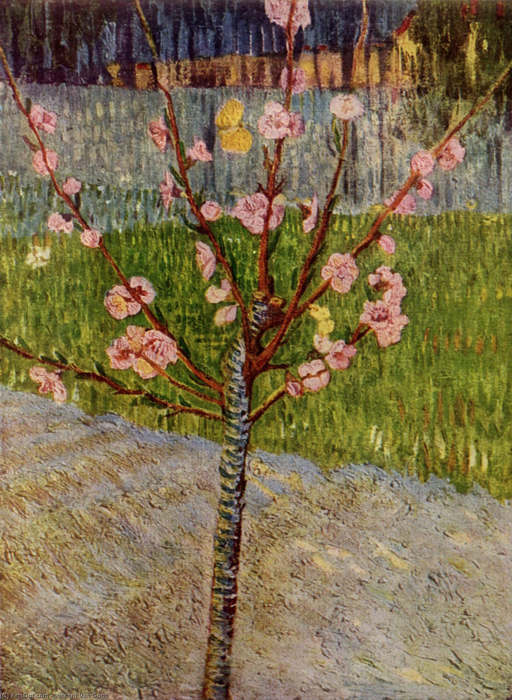Wikioo.org - The Encyclopedia of Fine Arts - Painting, Artwork by Vincent Van Gogh - Almond Tree in Blossom