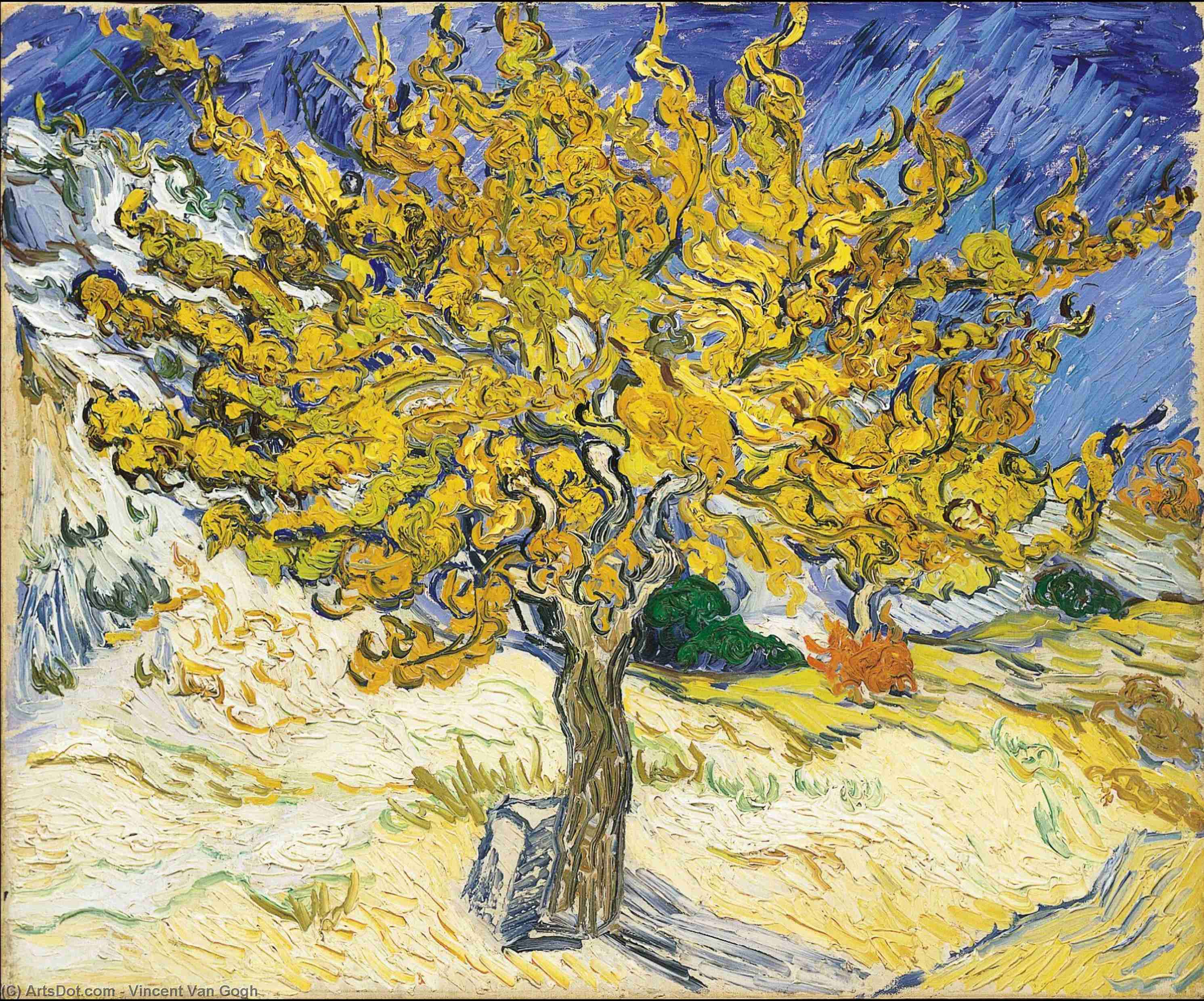 Mulberry Tree, The - Vincent Van Gogh