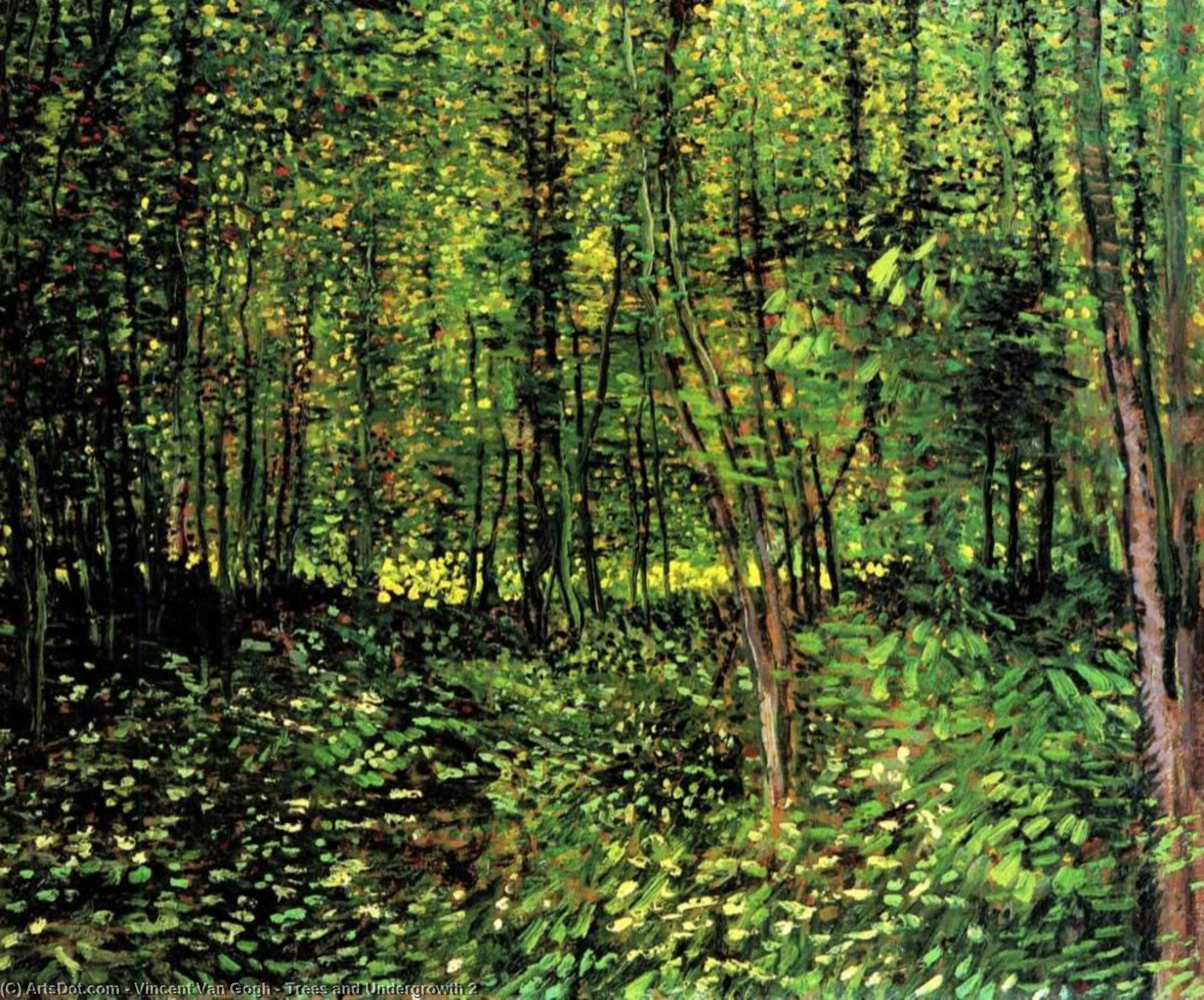 WikiOO.org - Enciklopedija likovnih umjetnosti - Slikarstvo, umjetnička djela Vincent Van Gogh - Trees and Undergrowth 2