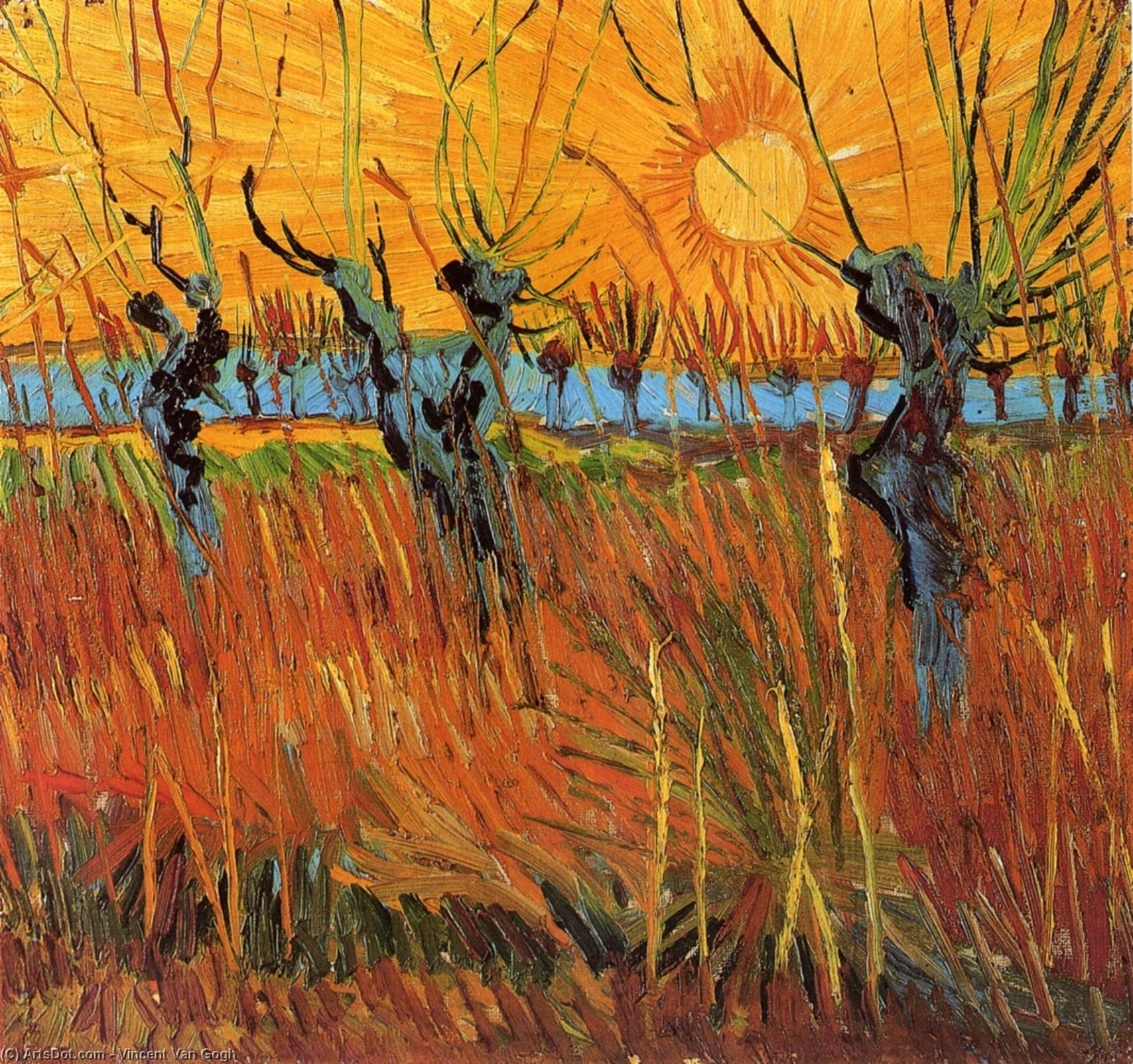 Wikioo.org - The Encyclopedia of Fine Arts - Painting, Artwork by Vincent Van Gogh - Willows at Sunset