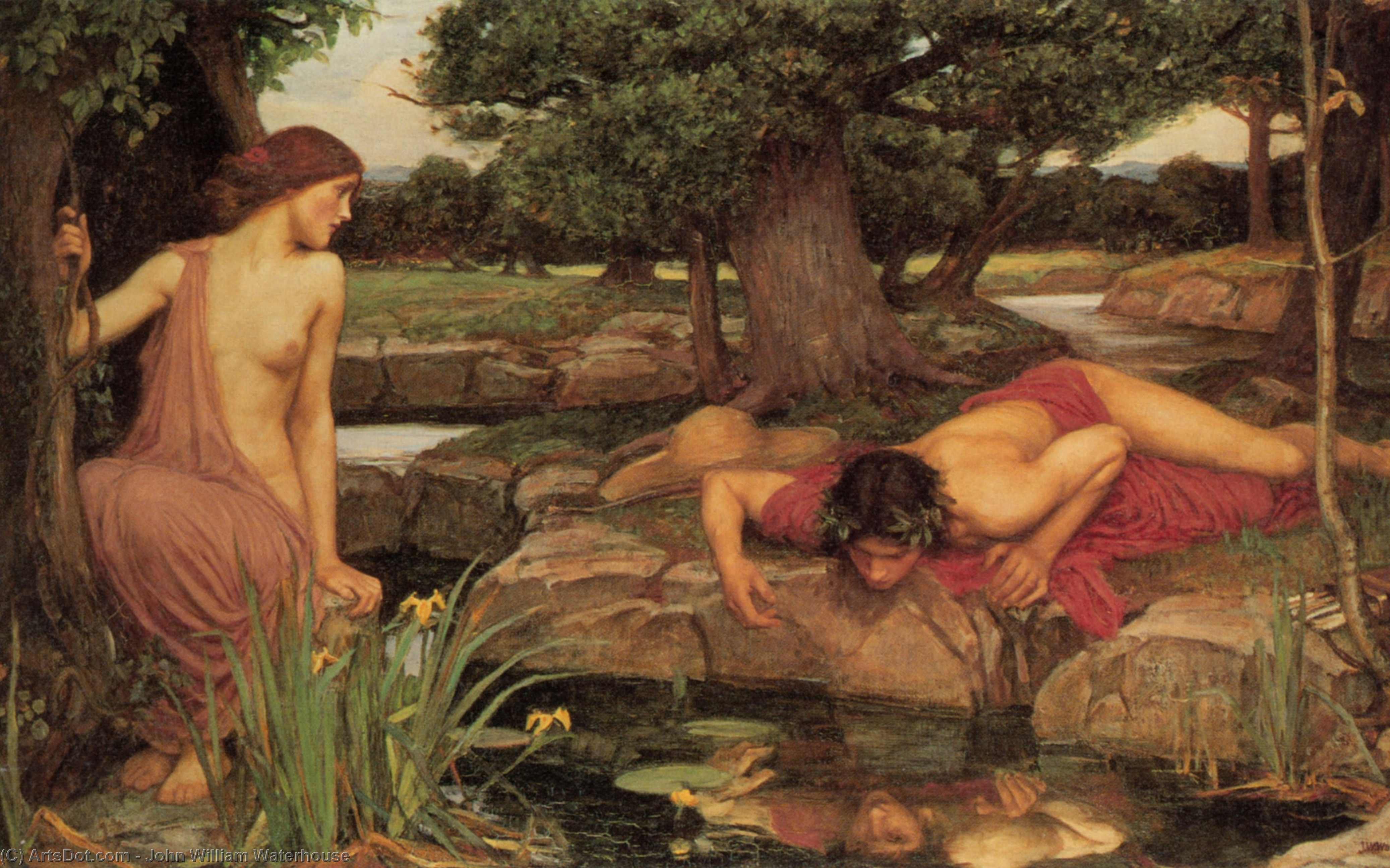 Wikioo.org - The Encyclopedia of Fine Arts - Painting, Artwork by John William Waterhouse - Echo and Narcissus