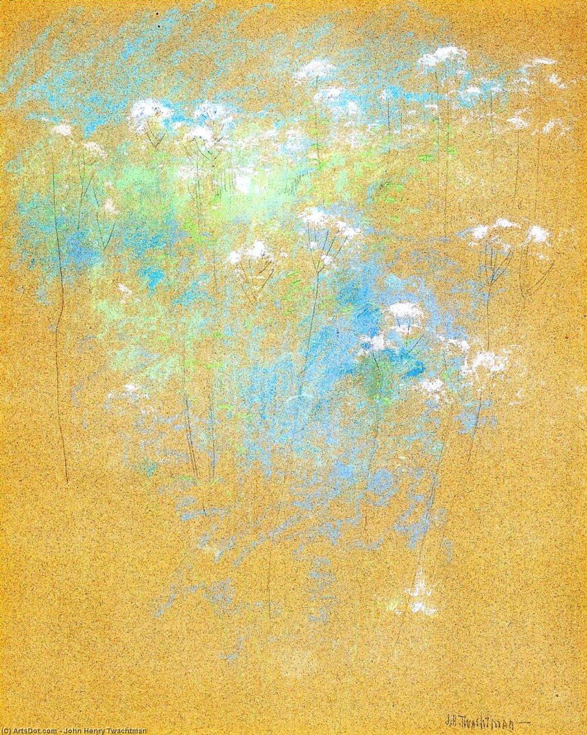 Wikioo.org - The Encyclopedia of Fine Arts - Painting, Artwork by John Henry Twachtman - Flowers
