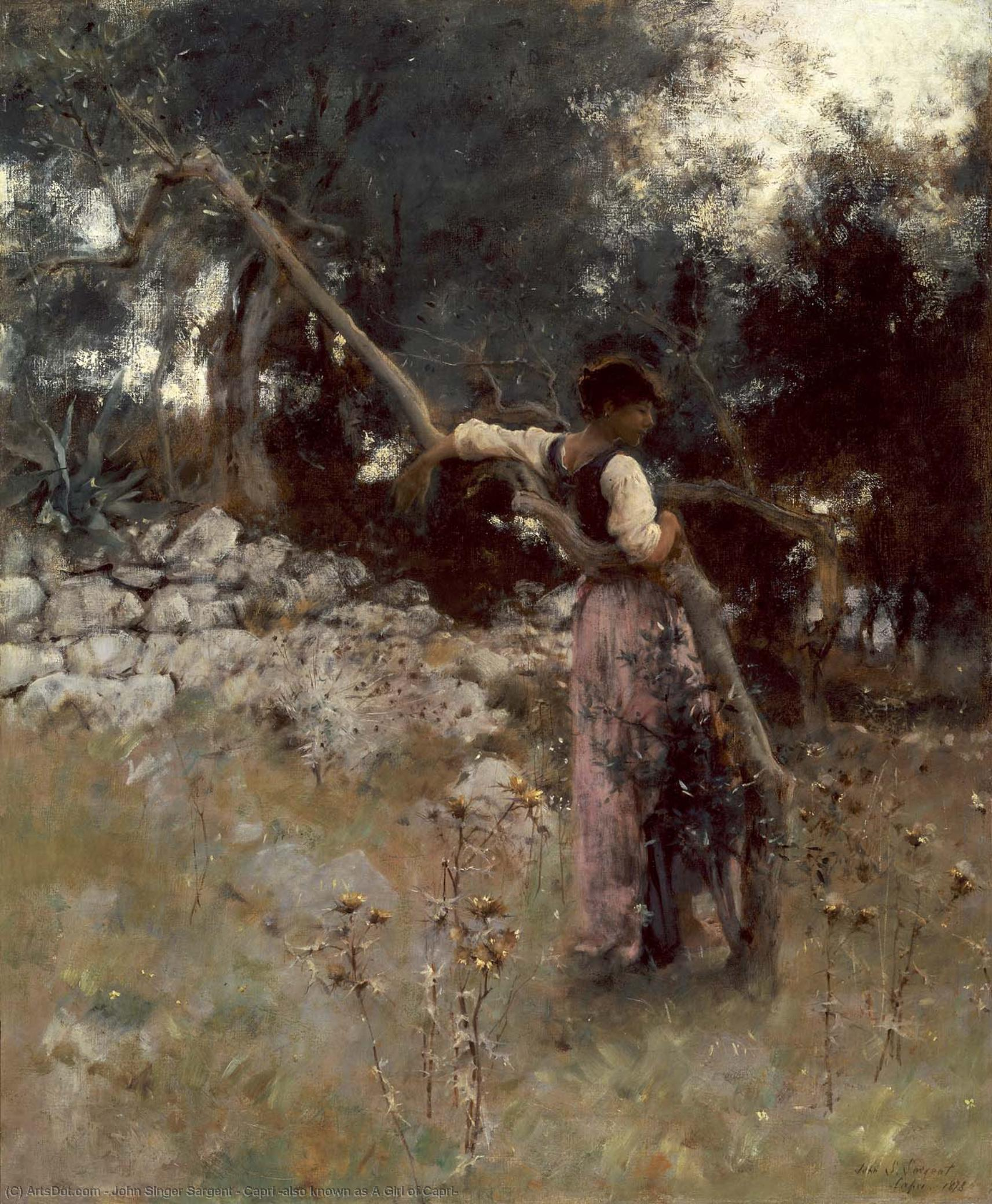 Wikioo.org - The Encyclopedia of Fine Arts - Painting, Artwork by John Singer Sargent - Capri (also known as A Girl of Capri)