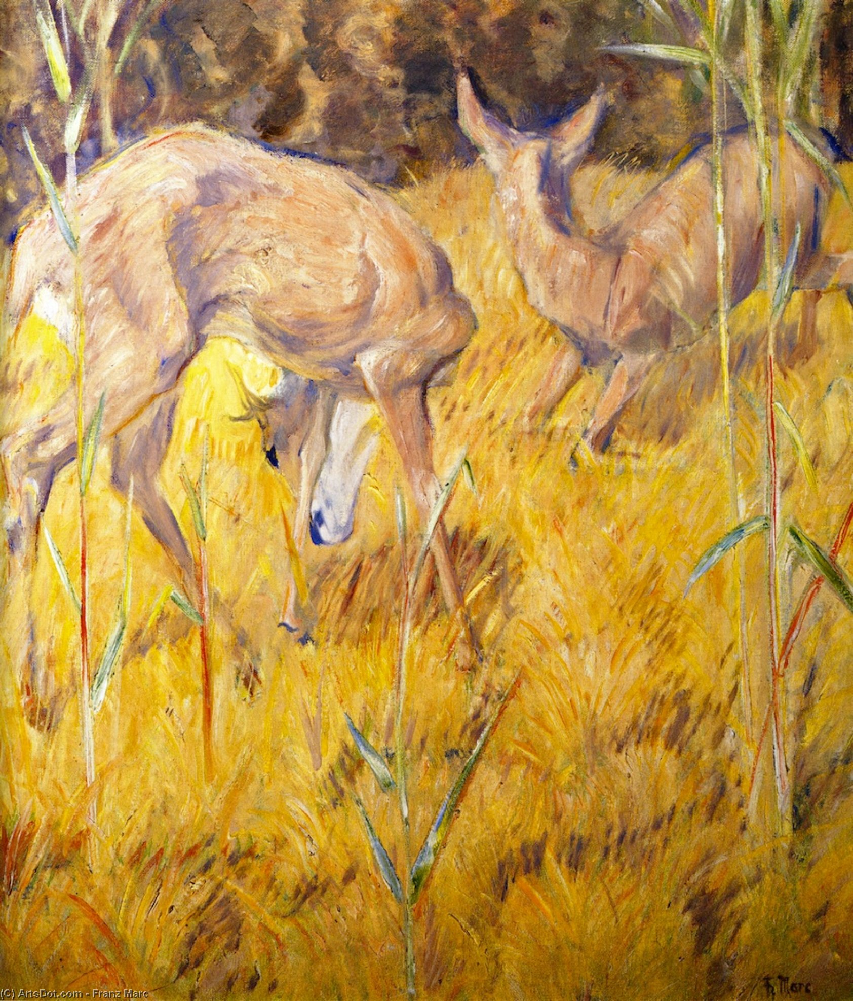 Wikioo.org - The Encyclopedia of Fine Arts - Painting, Artwork by Franz Marc - Deer in the Reeds
