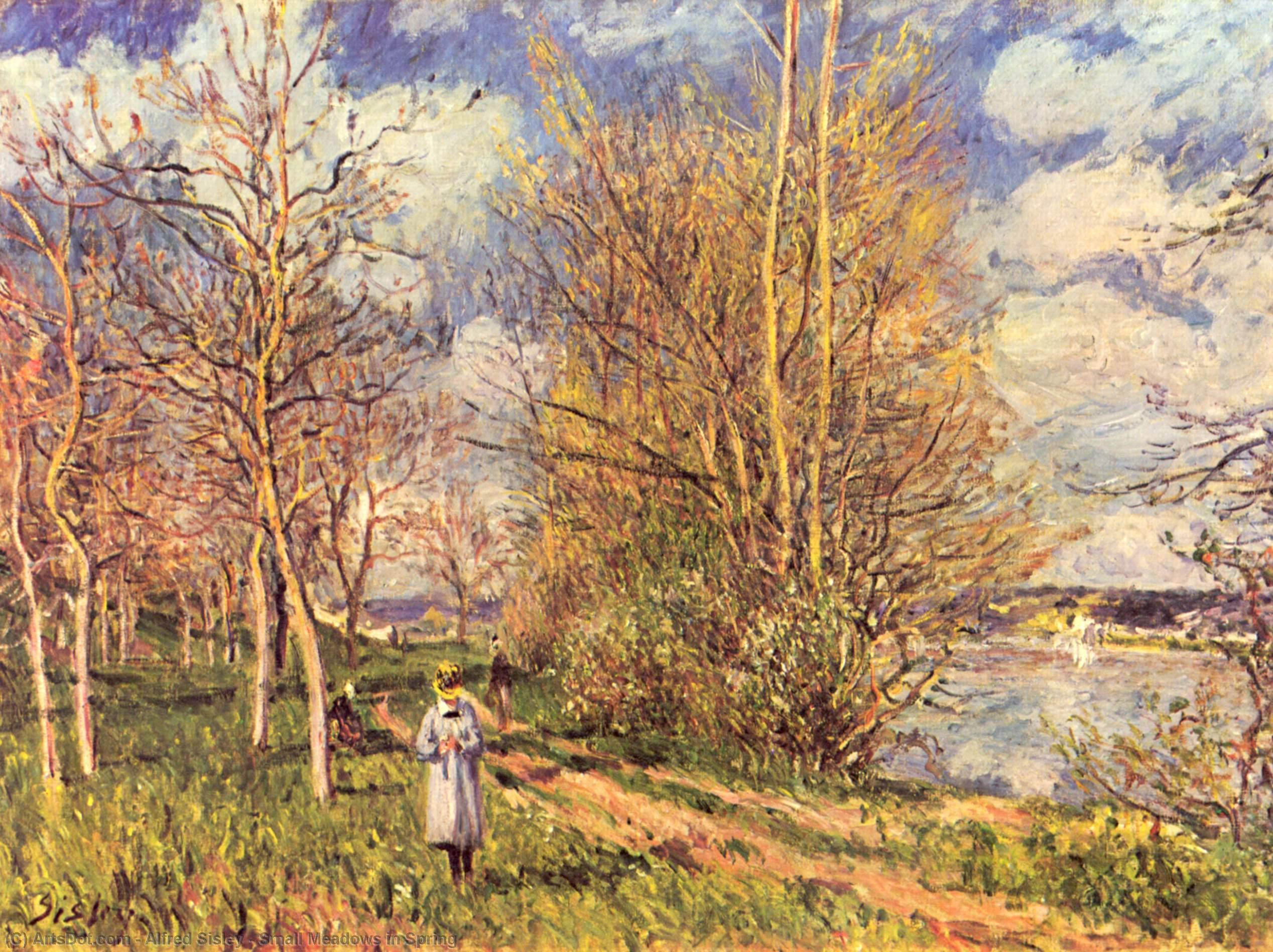 Wikioo.org - The Encyclopedia of Fine Arts - Painting, Artwork by Alfred Sisley - Small Meadows in Spring