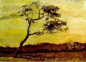 Wind-Beaten Tree, A