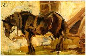 Small Horse Study