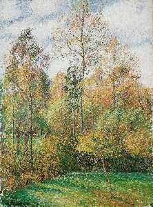 Autumn, Poplars
