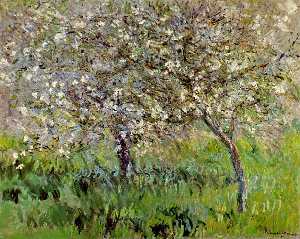 Apple Trees in Bloom at Giverny