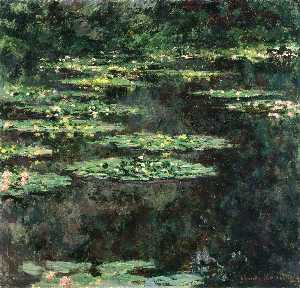Water Lilies (11)