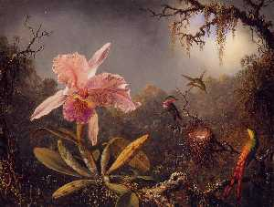 Wikioo.org - The Encyclopedia of Fine Arts - Artist, Painter  Martin Johnson Heade