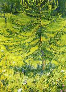 Larch Sapling (also known as Larch Sapling in a Forest Glade)