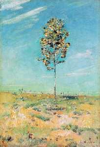 The Small Plantane