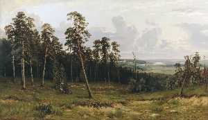 Fir forest on the river Kama