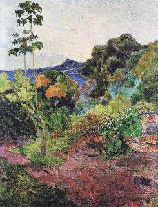 Martinique Landscape