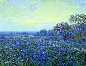 Field of Bluebonnets under Cloudy Sky