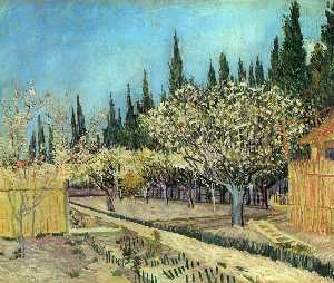 Orchard in Blossom, Bordered by Cypresses