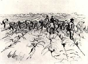Farmers Working in the Field