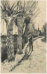 Road with Pollard Willows