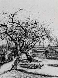 Parsonage Garden