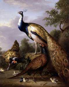 Peacock, Hen and Cock Pheasant in a Landscape - Tobias Stranover