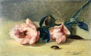 Peonies and June Bug