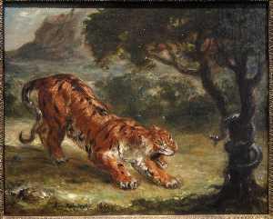 Tiger Growling at a Snake