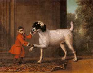 A favorite poodle and monkey belonging to thomas osborn