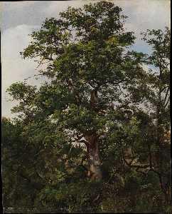 Wikioo.org - The Encyclopedia of Fine Arts - Artist, Painter  Wolfgang-Adam Töpffer
