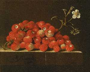 Wild strawberries on a ledge