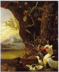 English Mountainous landscape with ducks