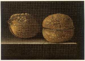 English Two Walnuts