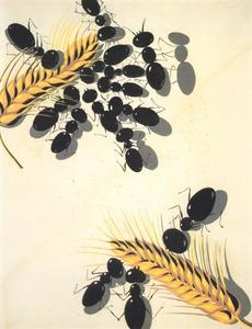 The Ants, 1936-37