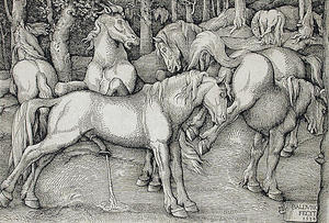 Stallion and Kicking Mare with Wild Horses