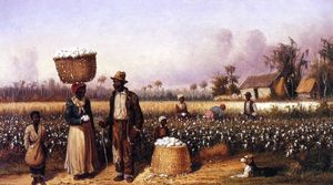 Negro Workers in Cotton Field with Dog